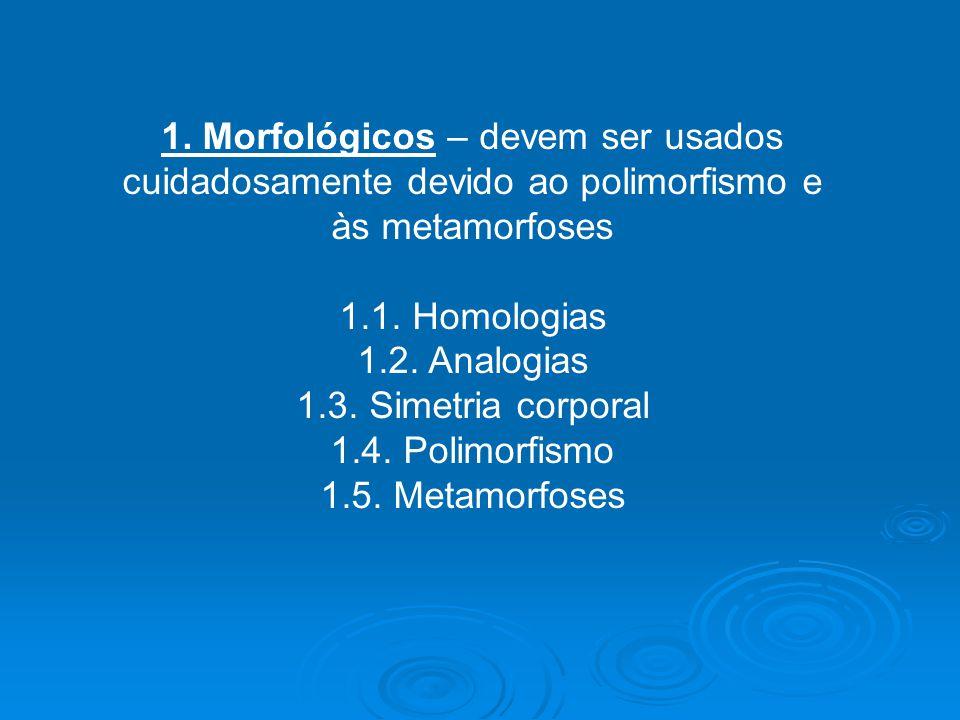 1. Morfológicos – devem ser usados cuidadosamente devido ao polimorfismo e às metamorfoses