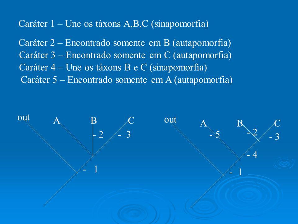 Caráter 1 – Une os táxons A,B,C (sinapomorfia)