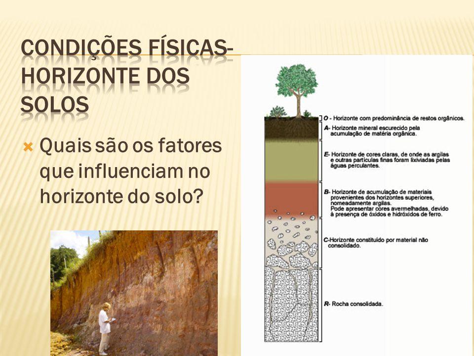 Condições físicas- horizonte dos solos