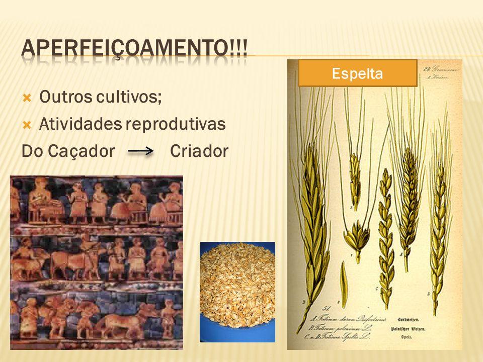 Aperfeiçoamento!!! Outros cultivos; Atividades reprodutivas