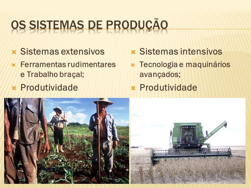 Os Sistemas de Produção