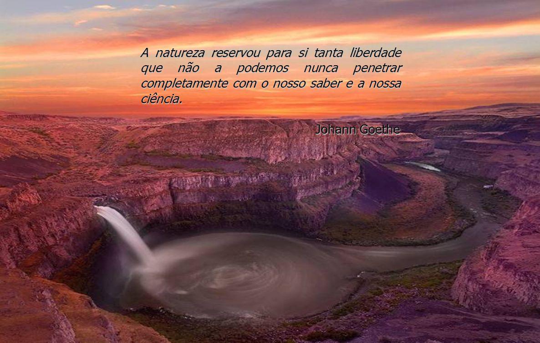 A natureza reservou para si tanta liberdade que não a podemos nunca penetrar completamente com o nosso saber e a nossa ciência.