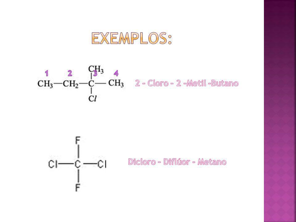 2 – Cloro – 2 –Metil -Butano Dicloro – Diflúor - Metano