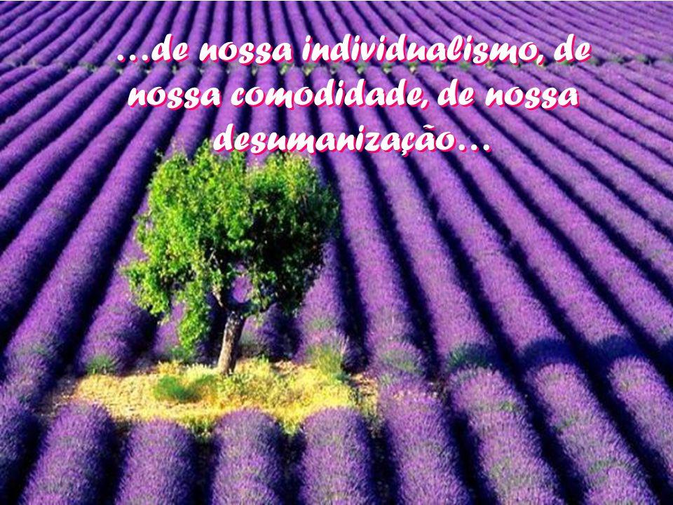 …de nossa individualismo, de nossa comodidade, de nossa desumanização…