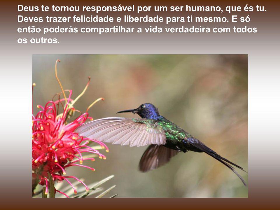 Deus te tornou responsável por um ser humano, que és tu