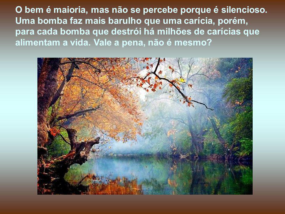O bem é maioria, mas não se percebe porque é silencioso