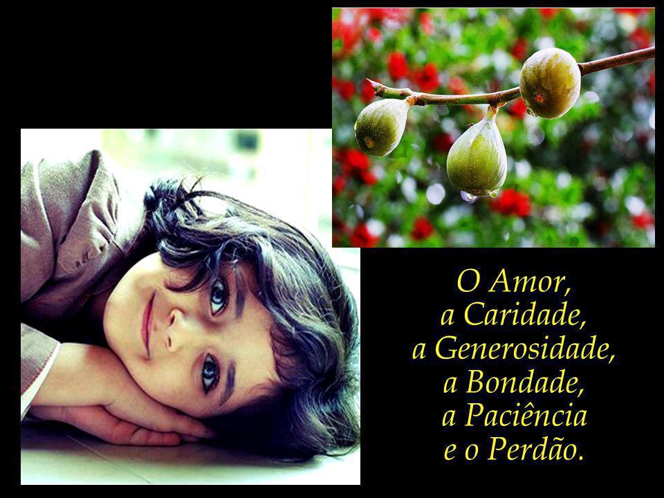 O Amor, a Caridade, a Generosidade, a Bondade, a Paciência e o Perdão.