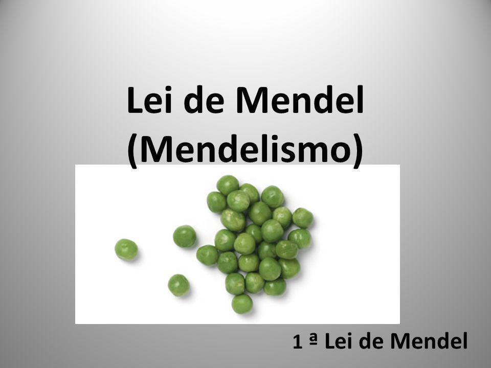 Lei de Mendel (Mendelismo)