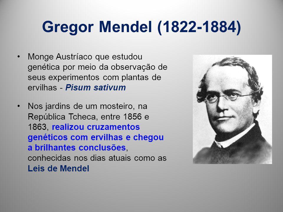 Gregor Mendel (1822-1884) Monge Austríaco que estudou genética por meio da observação de seus experimentos com plantas de ervilhas - Pisum sativum.