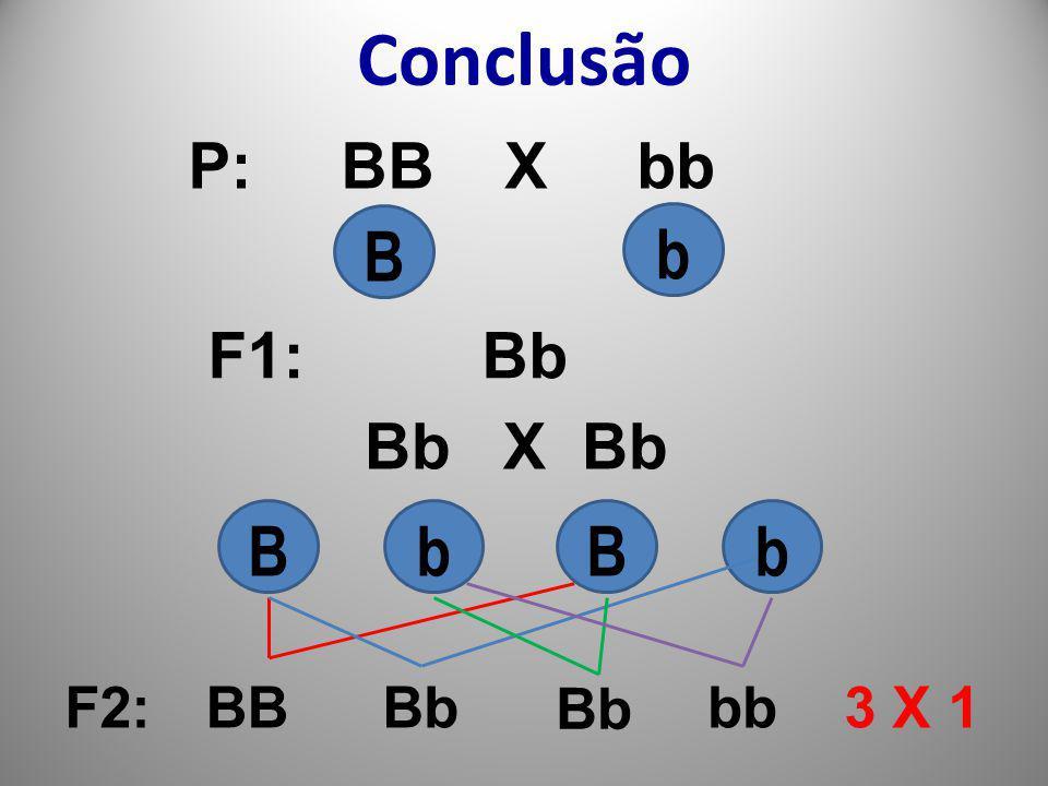 Conclusão P: BB X bb B b F1: Bb Bb X Bb B b B b F2: BB Bb Bb bb 3 X 1