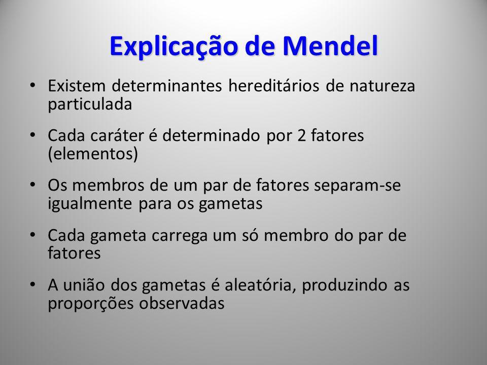Explicação de Mendel Existem determinantes hereditários de natureza particulada. Cada caráter é determinado por 2 fatores (elementos)