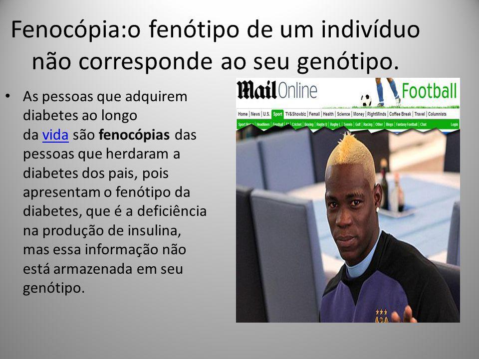 Fenocópia:o fenótipo de um indivíduo não corresponde ao seu genótipo.