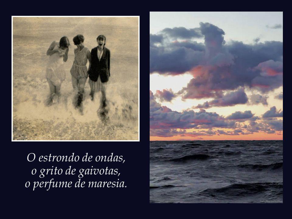 O estrondo de ondas, o grito de gaivotas, o perfume de maresia.