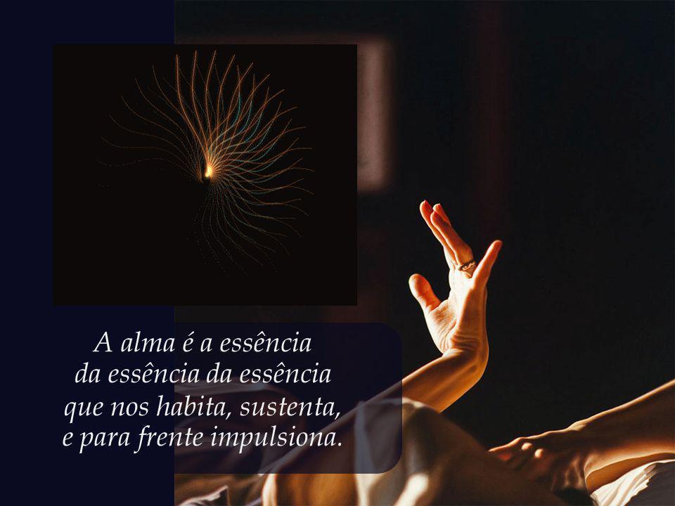 da essência da essência que nos habita, sustenta,