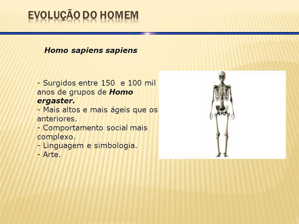 EVOLUÇÃO DO HOMEM Homo sapiens sapiens