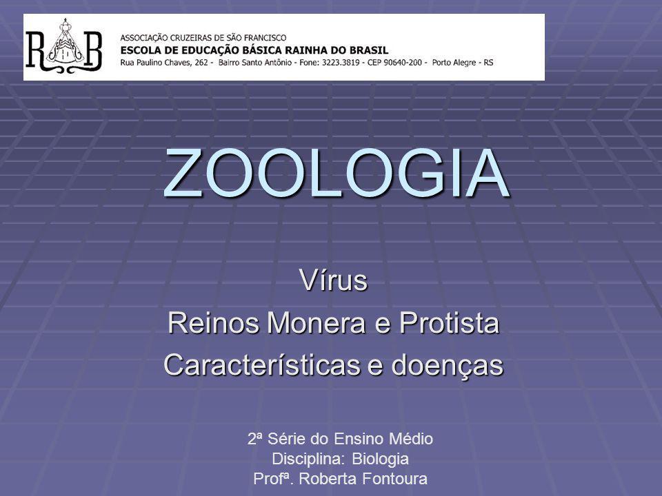 Vírus Reinos Monera e Protista Características e doenças