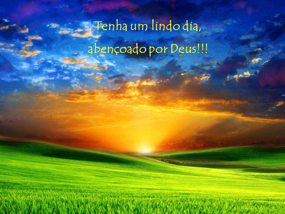 Tenha um lindo dia, abençoado por Deus!!!