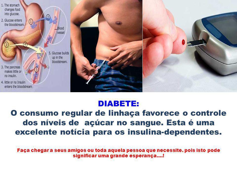 DIABETE: O consumo regular de linhaça favorece o controle dos níveis de açúcar no sangue. Esta é uma excelente notícia para os insulina-dependentes.