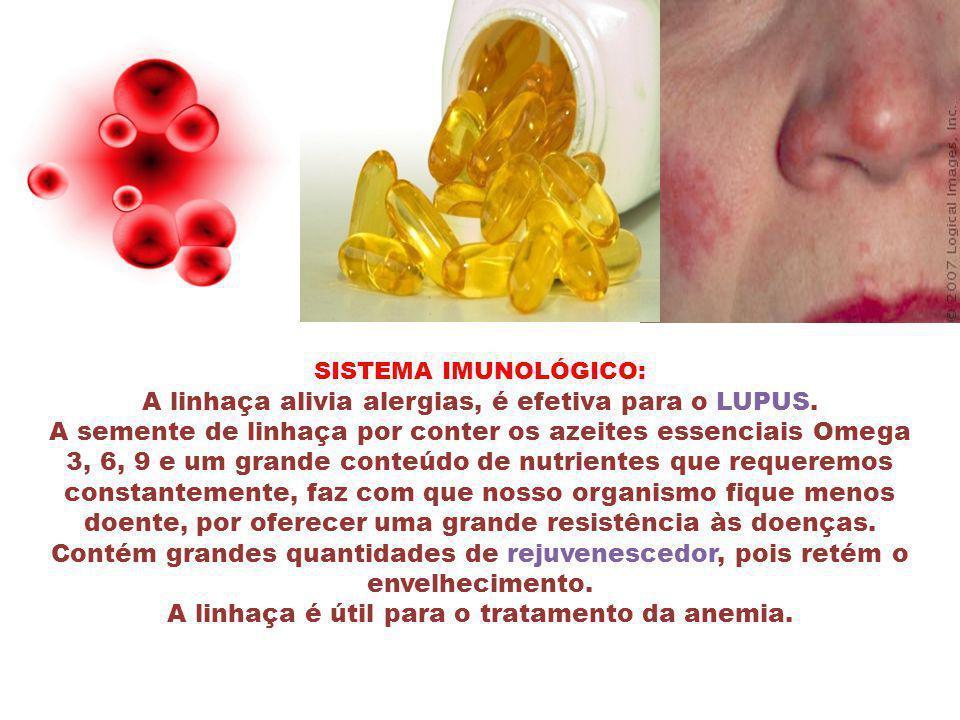 A linhaça é útil para o tratamento da anemia.