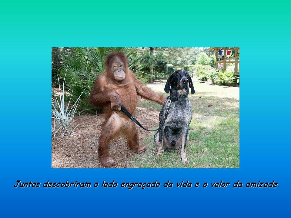 Juntos descobriram o lado engraçado da vida e o valor da amizade.