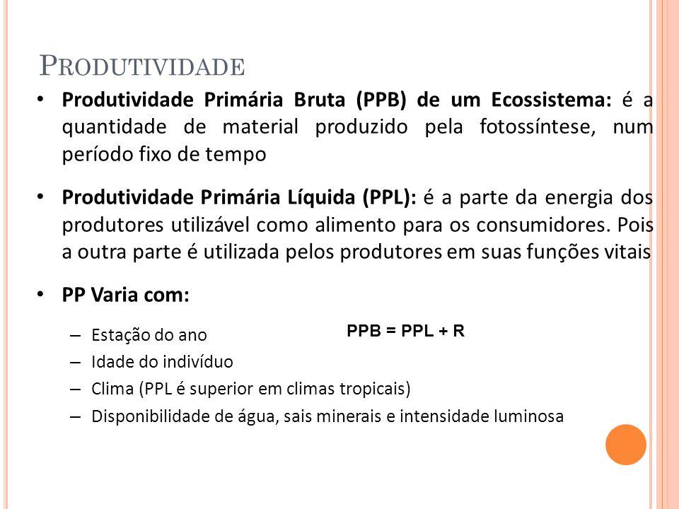 Produtividade Produtividade Primária Bruta (PPB) de um Ecossistema: é a quantidade de material produzido pela fotossíntese, num período fixo de tempo.
