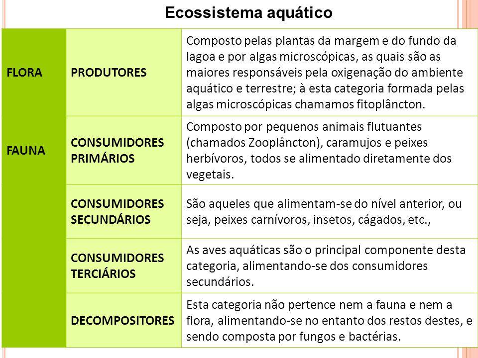 Ecossistema aquático FLORA PRODUTORES