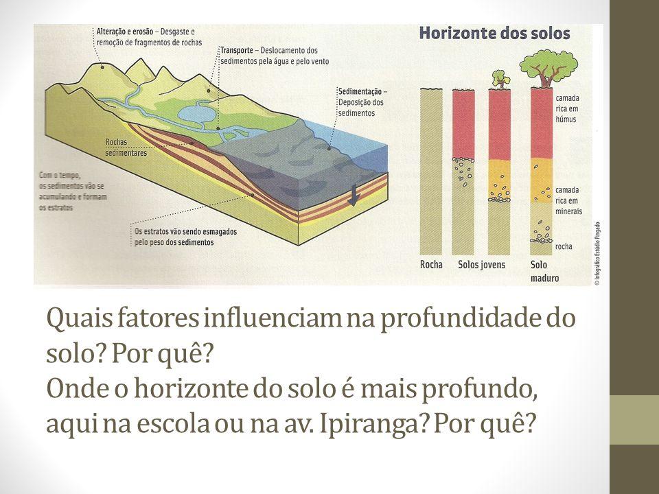 Quais fatores influenciam na profundidade do solo. Por quê
