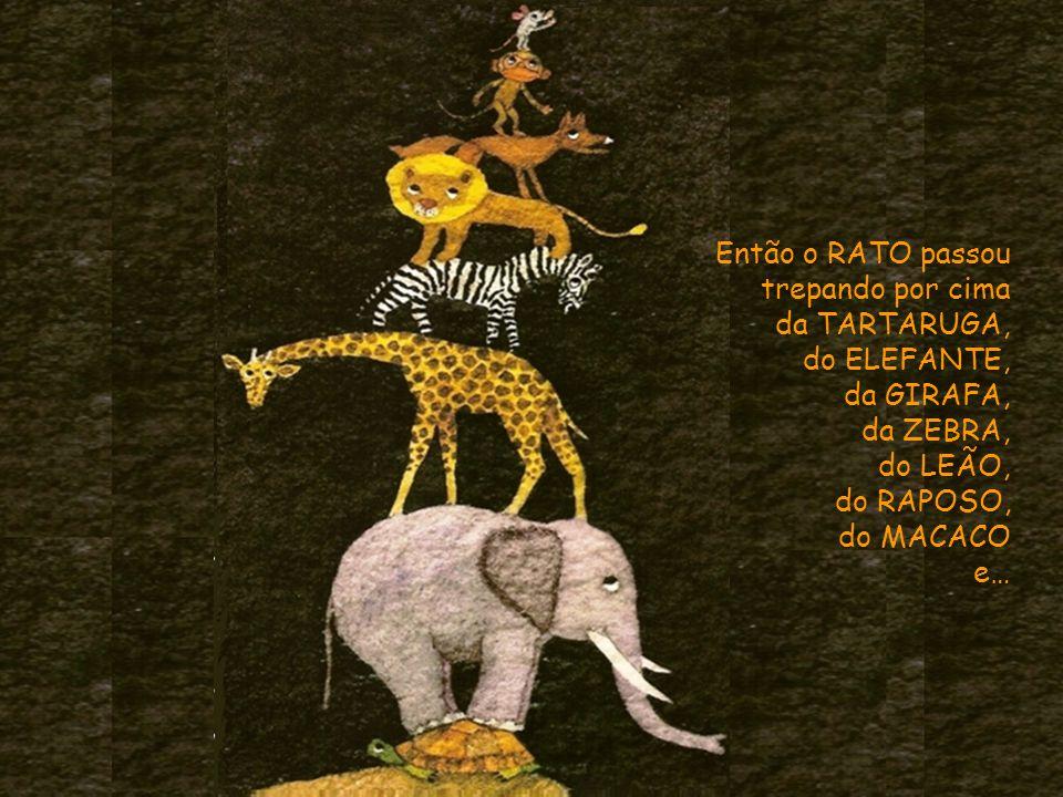 Então o RATO passou trepando por cima. da TARTARUGA, do ELEFANTE, da GIRAFA, da ZEBRA, do LEÃO,