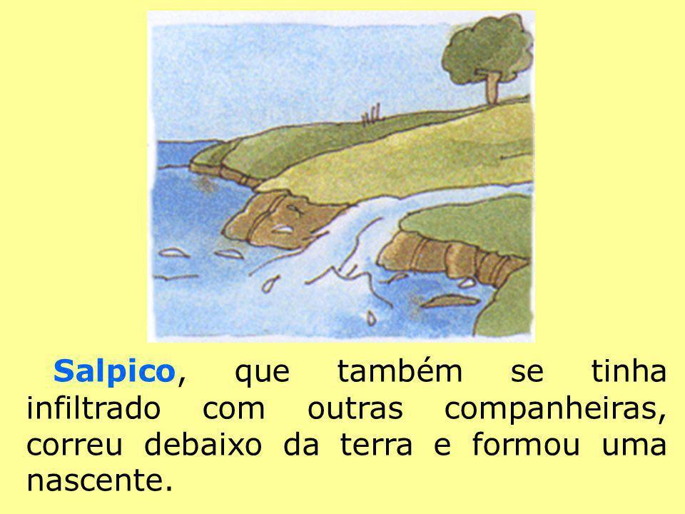 Salpico, que também se tinha infiltrado com outras companheiras, correu debaixo da terra e formou uma nascente.