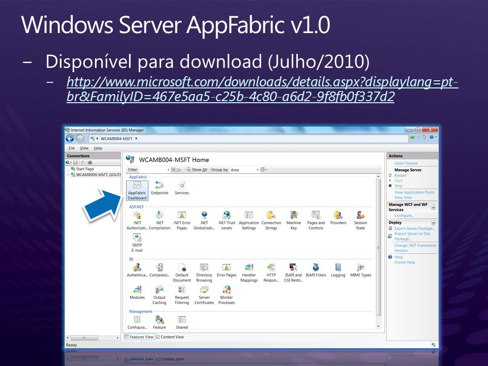Windows Server AppFabric v1.0