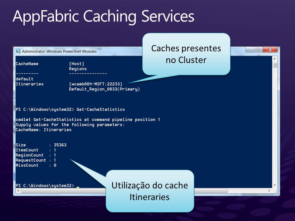 AppFabric Caching Services