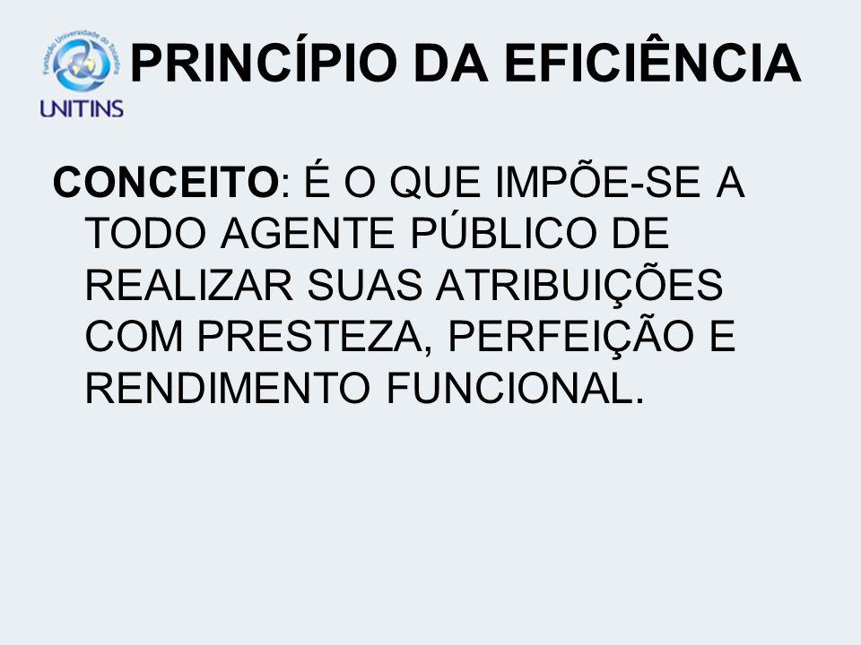 PRINCÍPIO DA EFICIÊNCIA