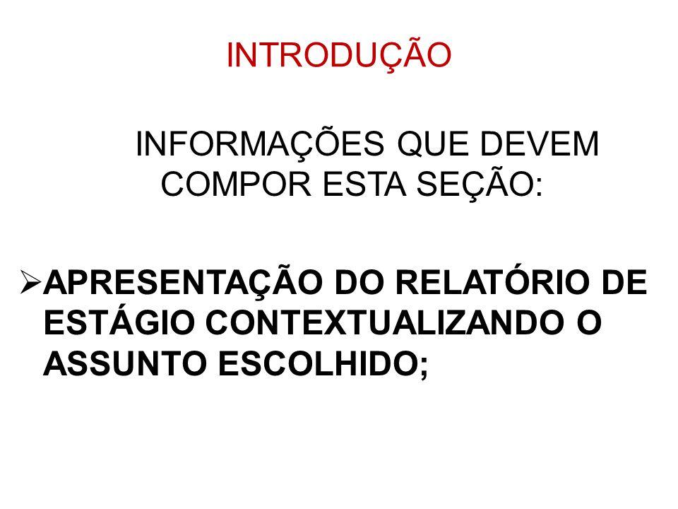 INFORMAÇÕES QUE DEVEM COMPOR ESTA SEÇÃO: