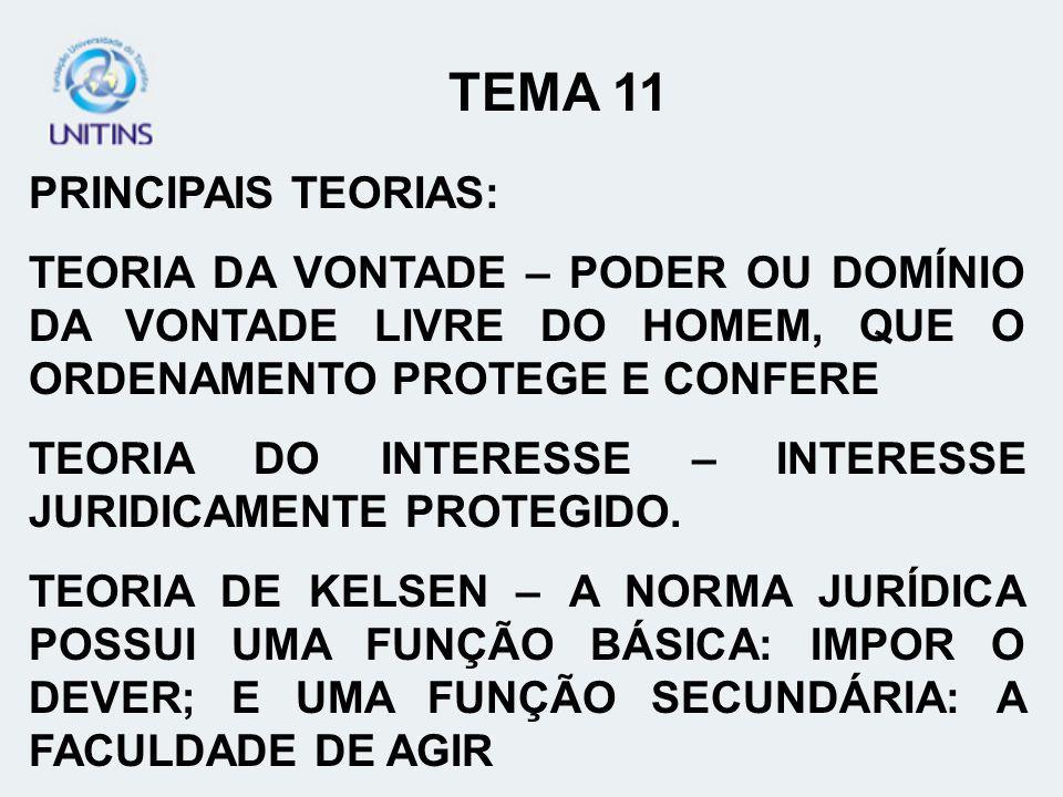 TEMA 11 PRINCIPAIS TEORIAS: