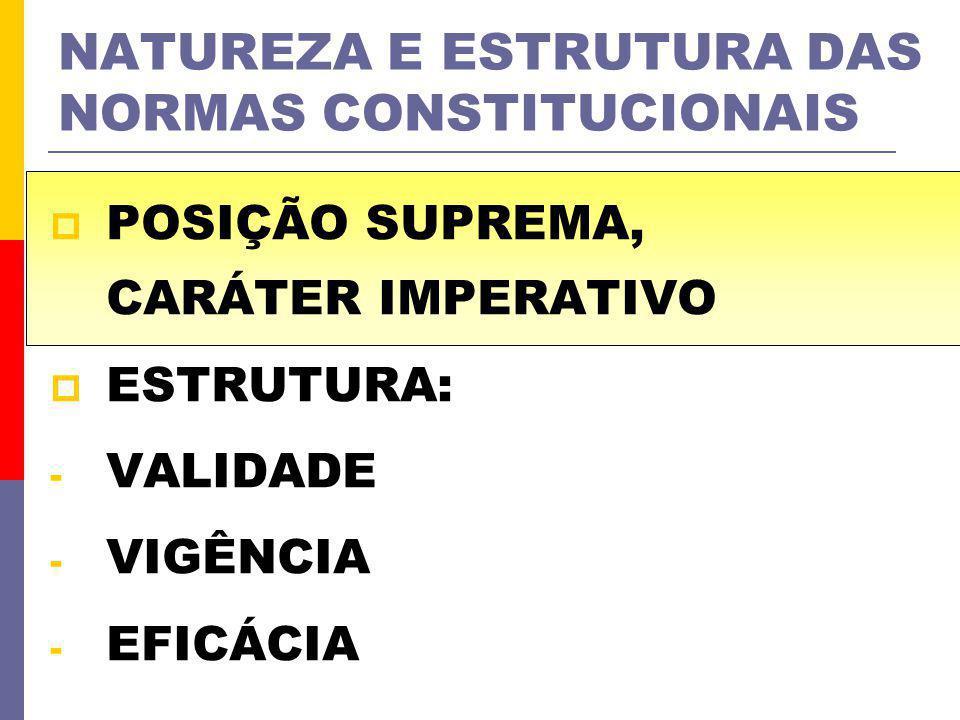 NATUREZA E ESTRUTURA DAS NORMAS CONSTITUCIONAIS