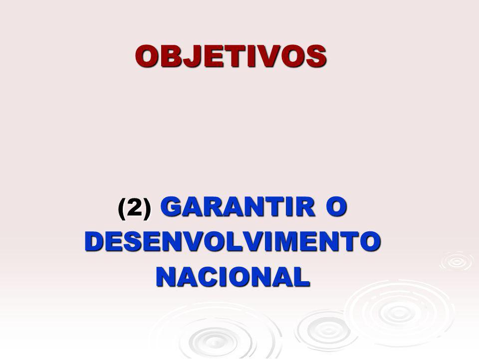 (2) GARANTIR O DESENVOLVIMENTO NACIONAL