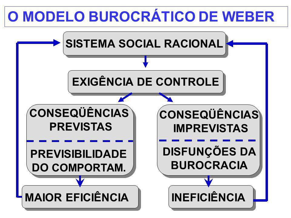 SISTEMA SOCIAL RACIONAL