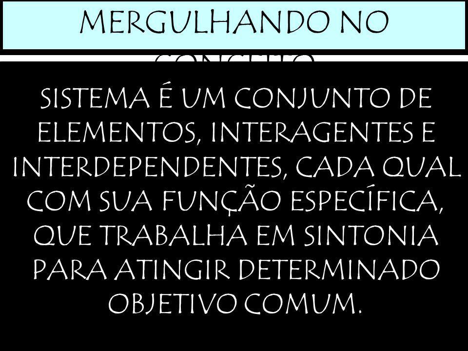 MERGULHANDO NO CONCEITO