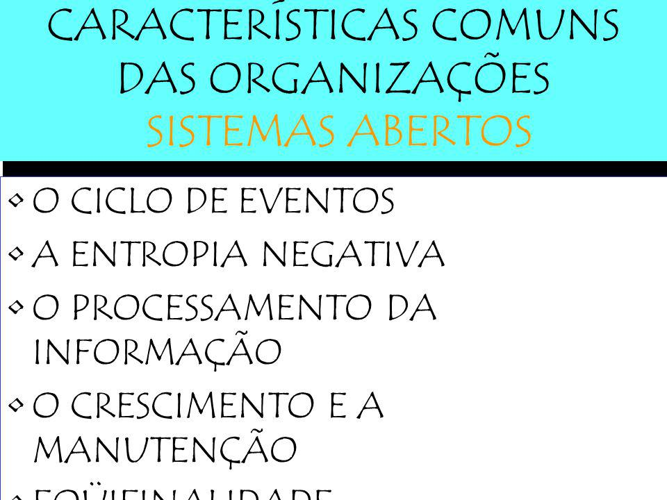 CARACTERÍSTICAS COMUNS DAS ORGANIZAÇÕES SISTEMAS ABERTOS