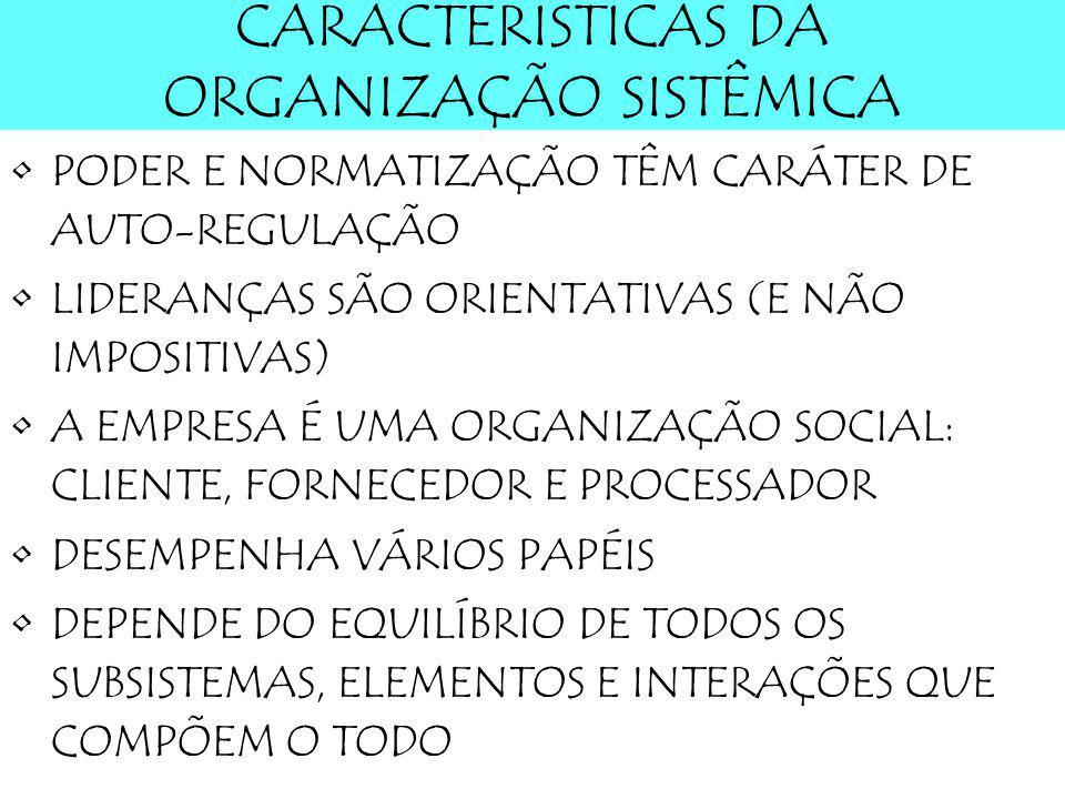 CARACTERÍSTICAS DA ORGANIZAÇÃO SISTÊMICA