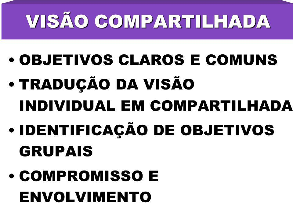 VISÃO COMPARTILHADA OBJETIVOS CLAROS E COMUNS