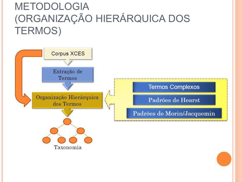 METODOLOGIA (ORGANIZAÇÃO HIERÁRQUICA DOS TERMOS)
