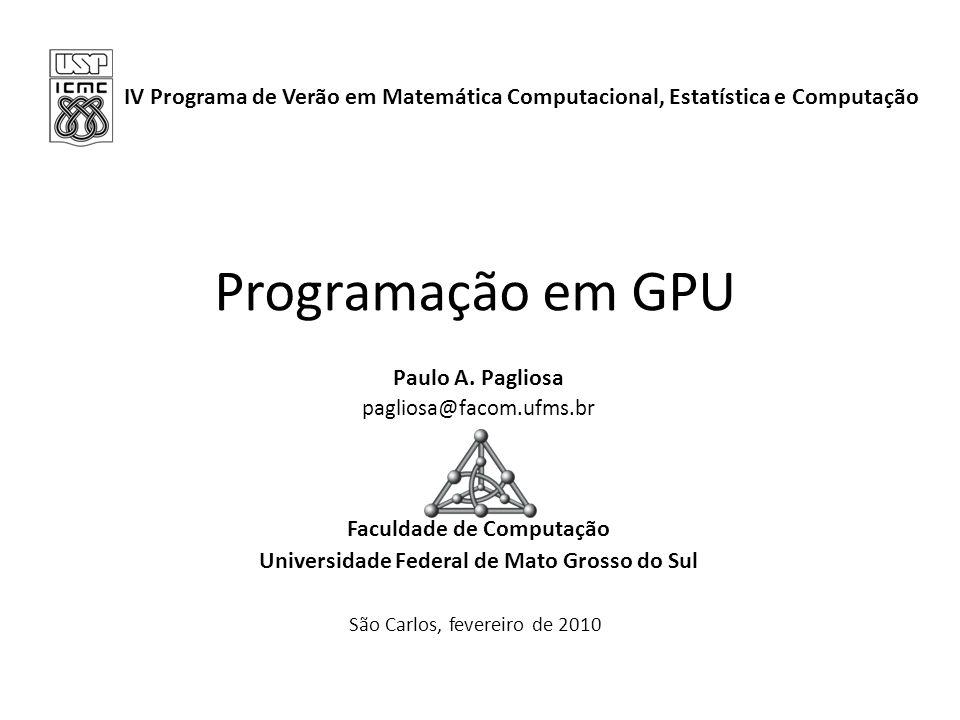 Faculdade de Computação Universidade Federal de Mato Grosso do Sul