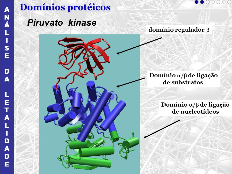 Domínios protéicos Piruvato kinase A N Á L I S E D T
