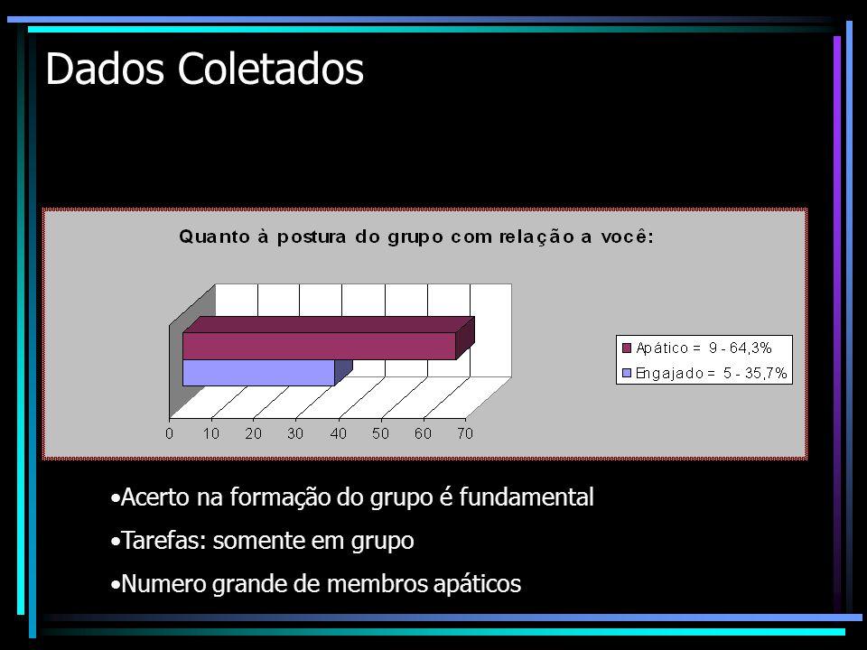 Dados Coletados Acerto na formação do grupo é fundamental
