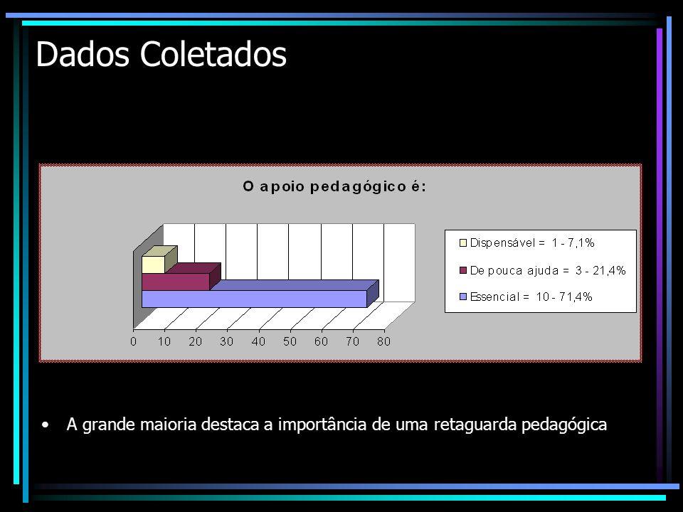 Dados Coletados A grande maioria destaca a importância de uma retaguarda pedagógica