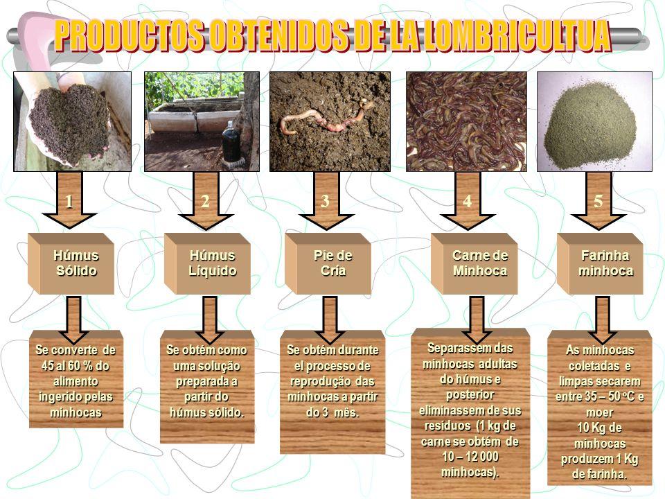 PRODUCTOS OBTENIDOS DE LA LOMBRICULTUA