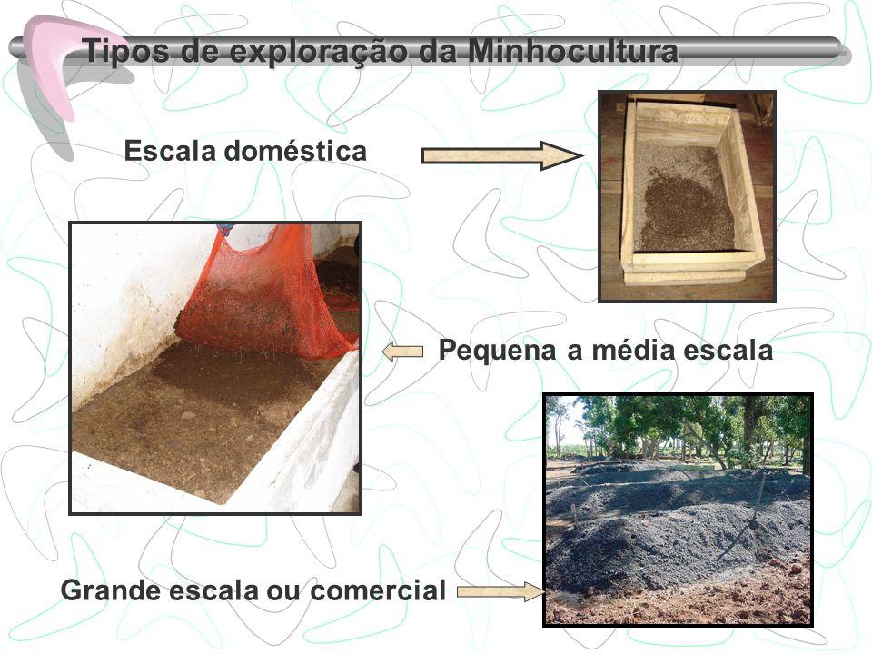 Tipos de exploração da Minhocultura