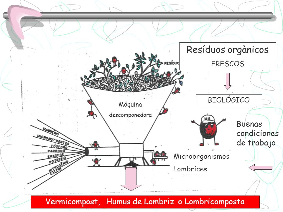 Vermicompost, Humus de Lombriz o Lombricomposta