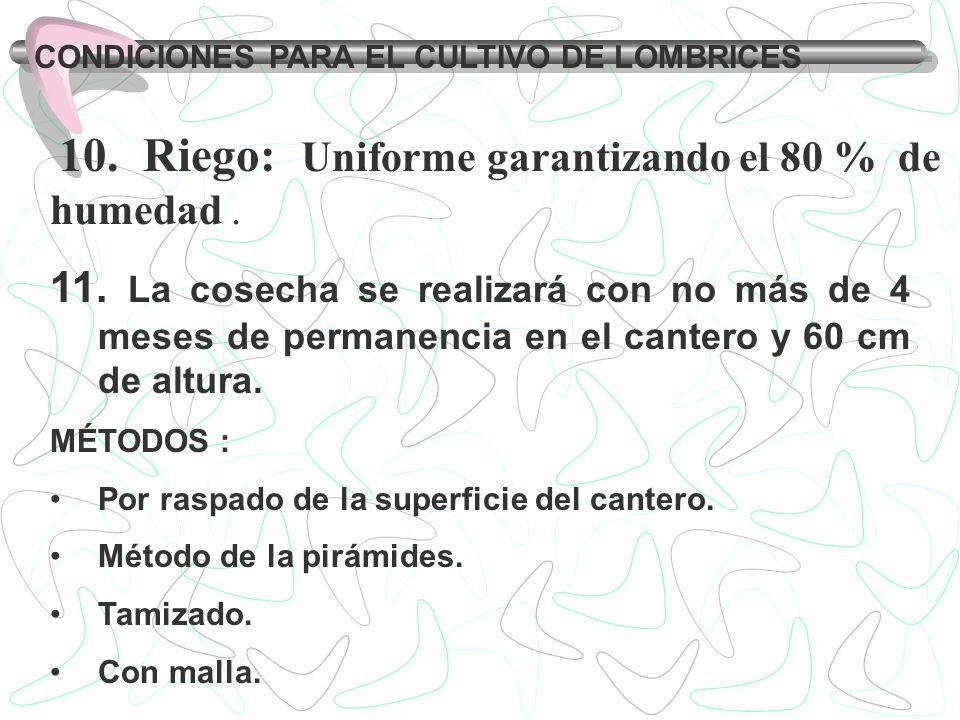 CONDICIONES PARA EL CULTIVO DE LOMBRICES